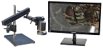 HDAF100AR-M22 Auto Focus HD 1080p Digital Microscope with Articulating Arm Stand and Optional HD Monitor