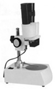 FS Compact Dual Power or Fixed Power Stereo Microscope 20X Dual Illuminated Stereo Microscope (FS310211)