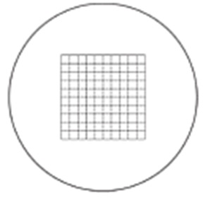 MA Microscope Eyepiece Net Grid Reticle  (MA112204)