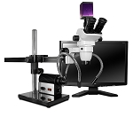 Trinocular Zoom Microscopes