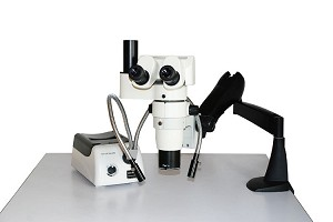 PZ4 Series Parallel Zoom Stereo Microscope PZ411102-5000T
